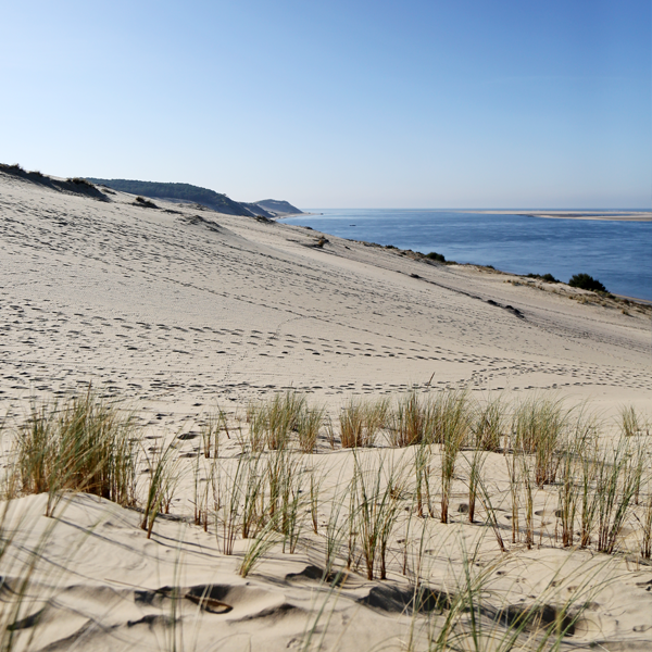 la teste de buhc dune du pilat - visuel