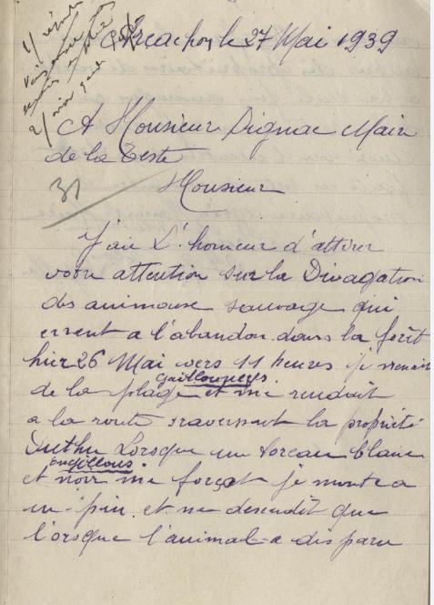lettre plainte vache sauvage 1939
