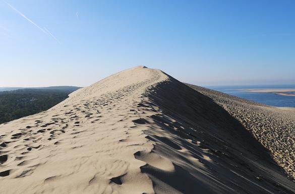dune vignette titre