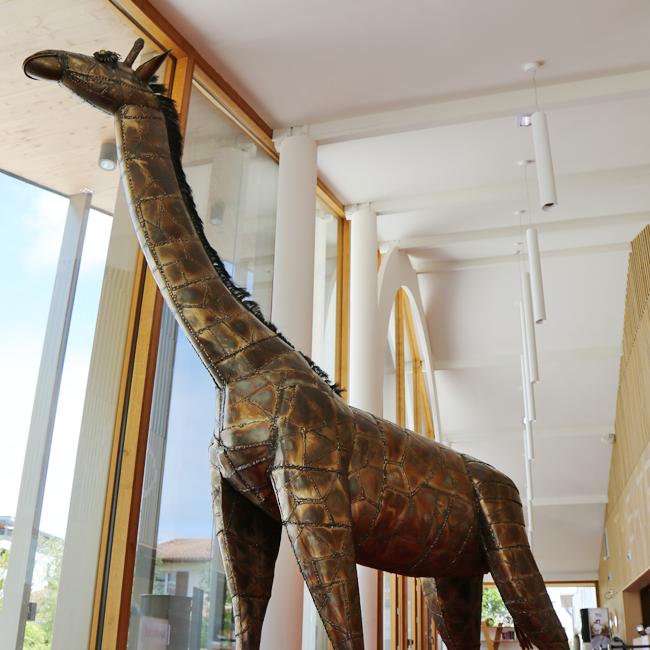 José Guirado - Girafe
