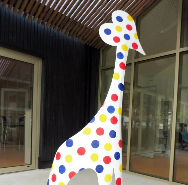 Colin Girafe